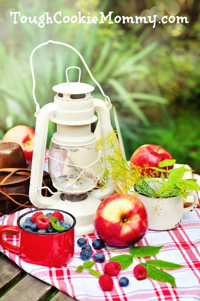 Tips For Planning The Perfect Picnic - Tough Cookie Mommy