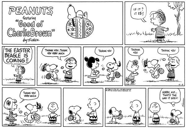 Charlie Brown Cookie Cake