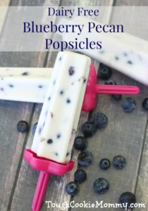Dairy Free Blueberry Pecan Popsicles