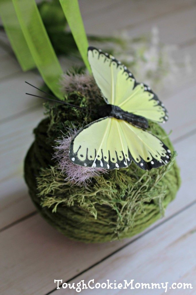 Moss And Butterfly Pomander Craft - Tough Cookie Mommy