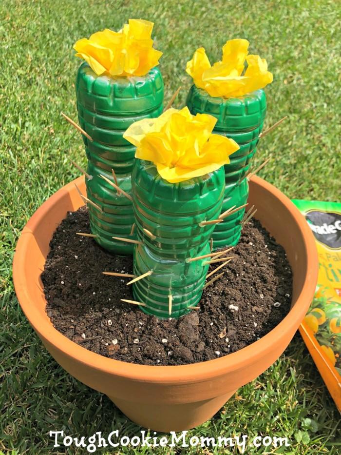 Cactus Bottle Craft